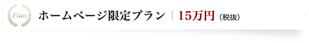 ホームページ限定プラン15万円(税抜)