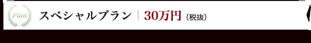 スペシャルプラン30万円(税抜)